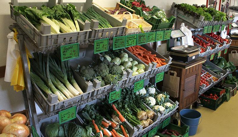 Gemüse Sorten in unserem Hofladen